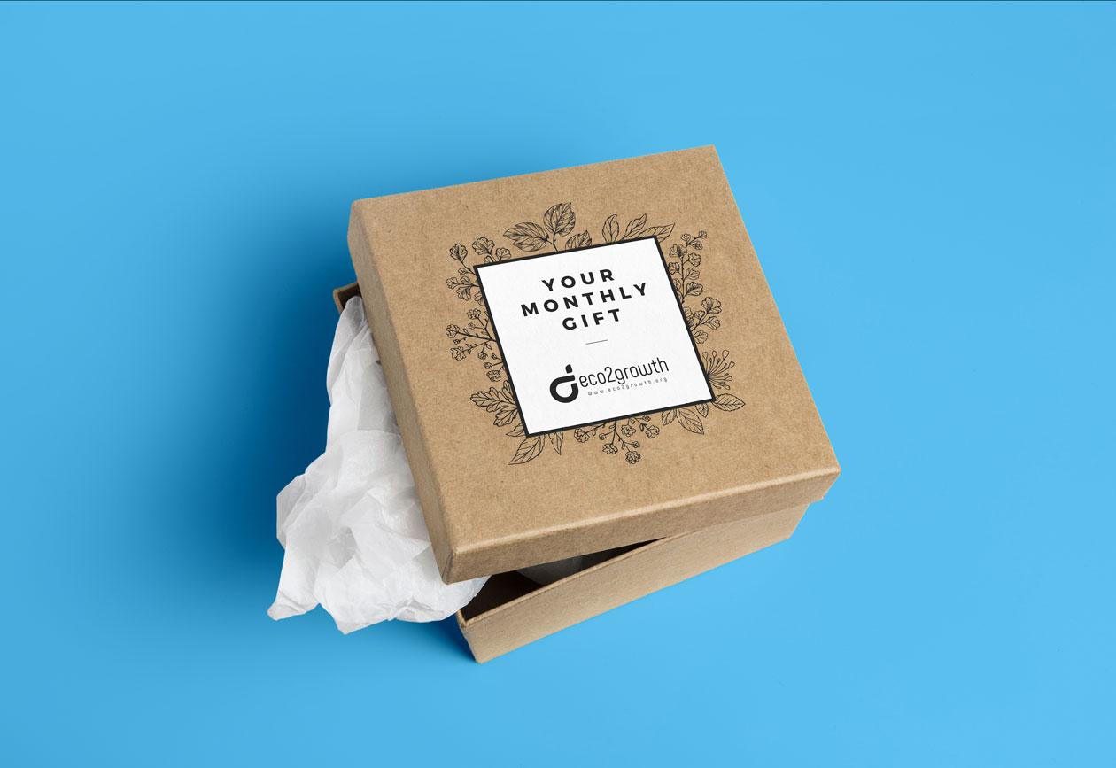 Eco2Growth Box Design